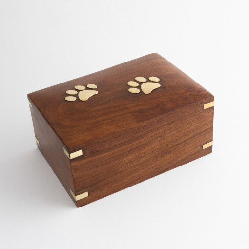 brass paws box 2